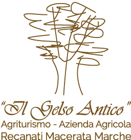 Il Gelso Antico -